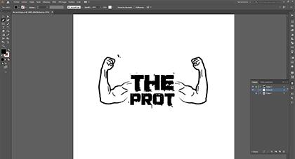 Création de logo, charte graphique, illustrations
